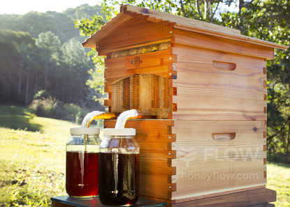 Flow Hives help a beekeeper get honey without opening the hive, but it's important to monitor the health of the honeybees, which require the attention of any livestock. (Photo: Flow Hive)