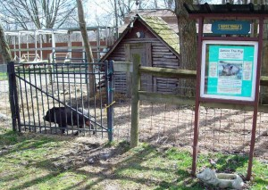 The original home of Janice the Pig (Photo by H. Craig Erskine III)