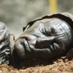 UA archeology students explore prehistoric forensics at Main Library's 'Bog Bodies Uncovered'