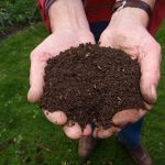 ReWorks announces food scrap compost giveaway for community gardens
