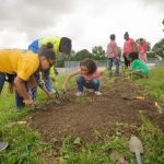Summit Food Coalition Awards more than $12,000 to community gardens